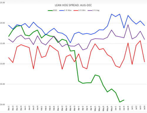 Lean Hogs: Aug-Dec Spread Far From Bullish