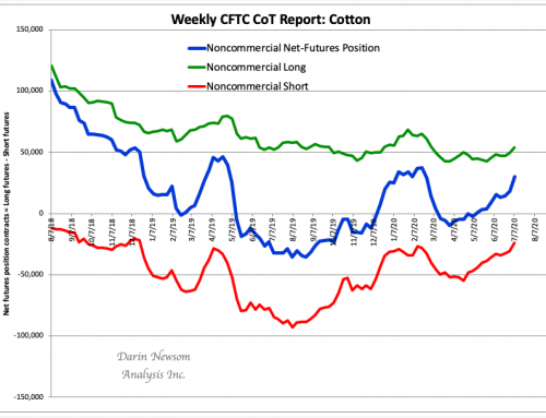 CoT Cotton: Buying Again