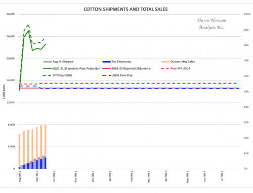 Cotton Sales and Shipments: An Uptick