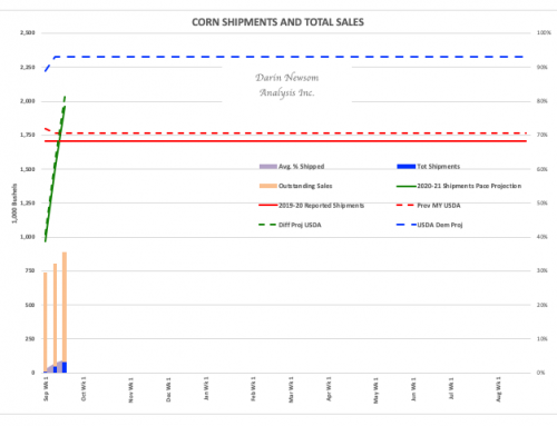 Corn Sales and Shipments: Gaining Strength