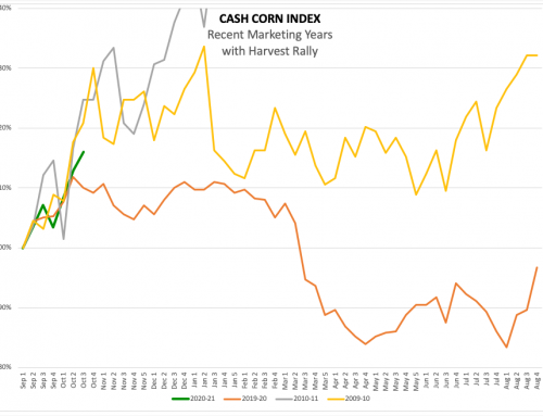 Cash Corn: A Decade Later
