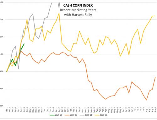 Cash Corn: A Decade Later