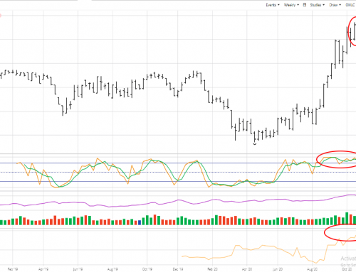 January Soybeans: Pins and Needles