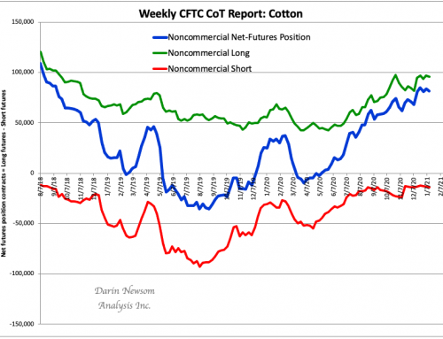 CoT Cotton: Not the Tail