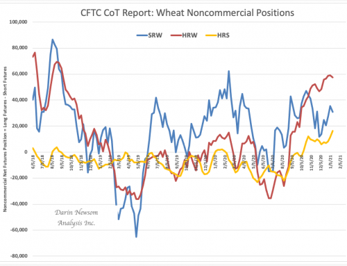 CoT Wheat: Thoughts Turning to Spring