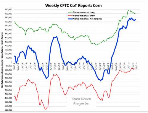 CoT Corn: Shrinking Shorts