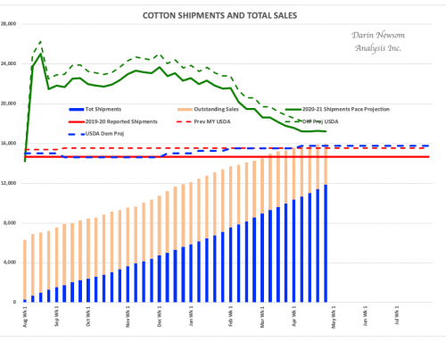 Cotton Sales and Shipments
