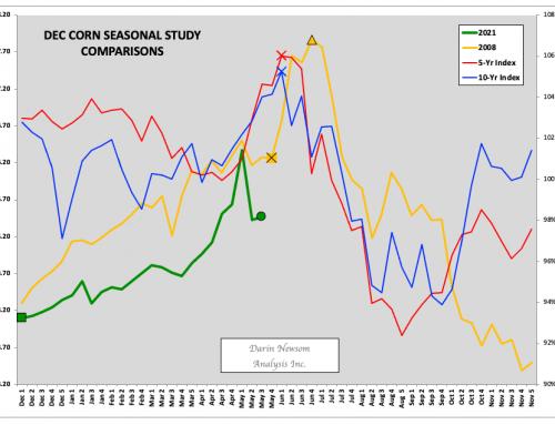 December Corn: Get Some Popcorn