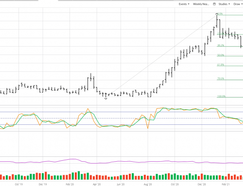 Soybean Meal: A Possible Silver Lining