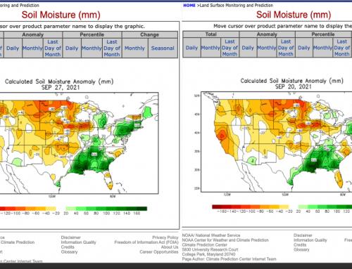 US Soil Moisture