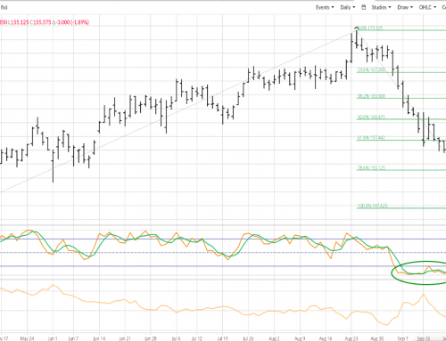 November Feeder Cattle: Early Action Will be Key